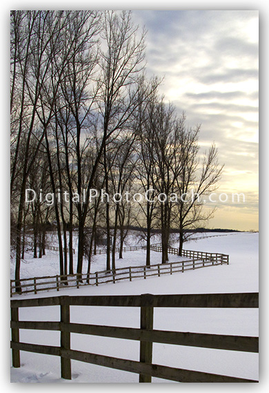 fence-graphic-design-foreground